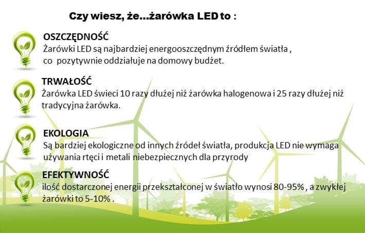 Żarówka LED E27 pro-fessional